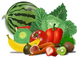alimentation pour perdre du ventre homme ou femme