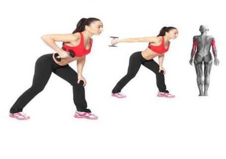 Application sportive exercice pour maigrir