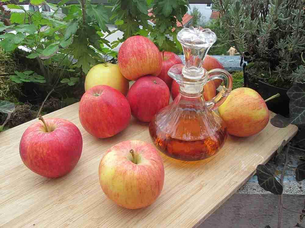 Vinaigre de cidre pour maigrir vite recette et bienfait - Faire une mere de vinaigre ...